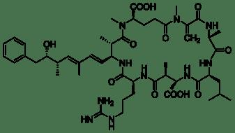 1024px-Microcystin-LR