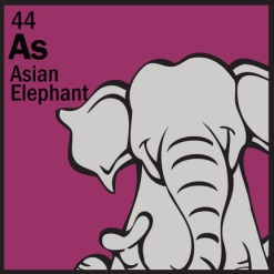 cell-asian-elephant