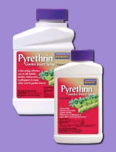 857pyrethrin_large