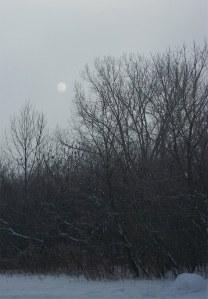 moon_copy