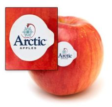 arctic-apples-label
