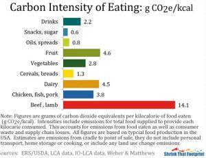 CO2eKcal