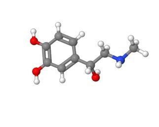 epinephrine2
