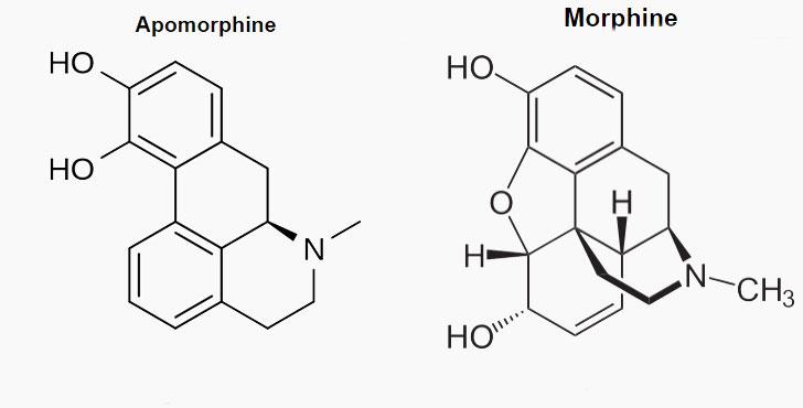 apomorphine