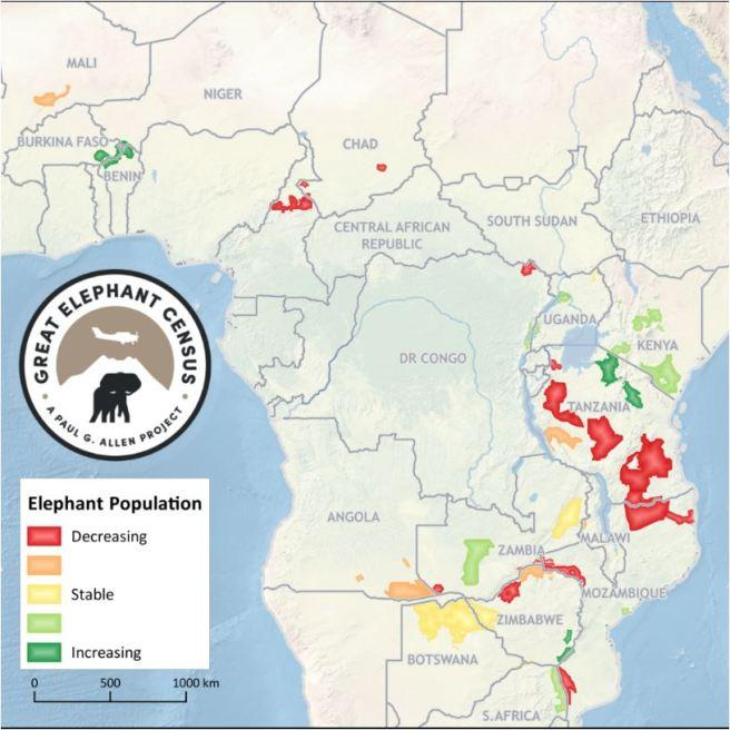 elephantsdw