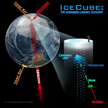 neutrino_icecube_diagram
