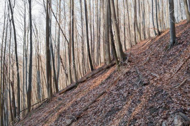 wallpaper-mountains-1366x768